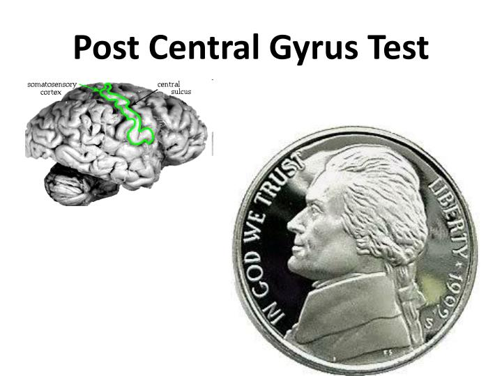 Post Central Gyrus Test