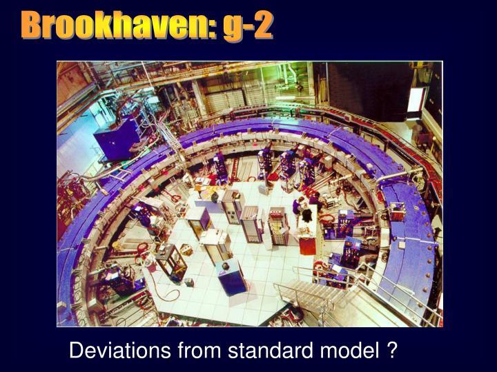 Brookhaven: g-2