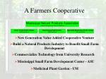 a farmers cooperative