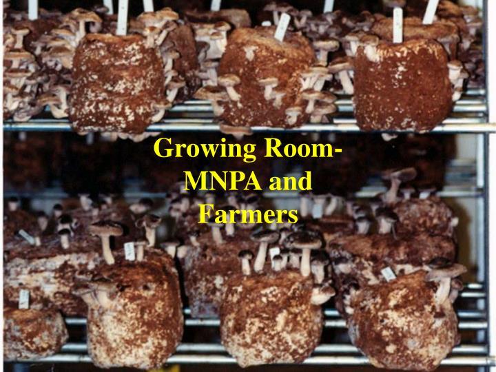 Growing Room-MNPA and Farmers