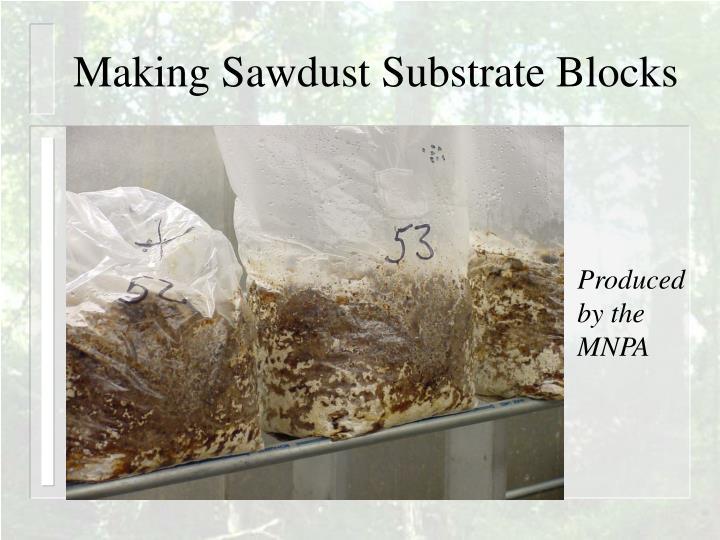 Making Sawdust Substrate Blocks