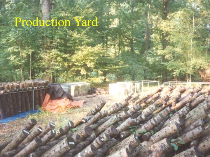 Production Yard