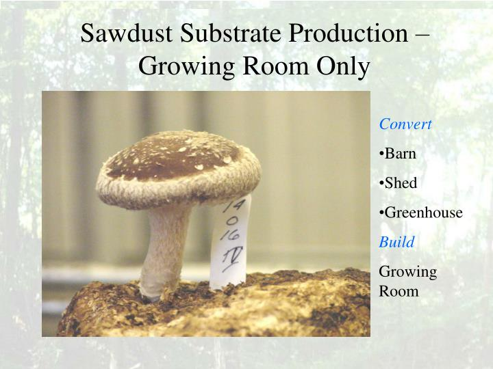 Sawdust Substrate Production – Growing Room Only
