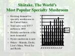 shiitake the world s most popular specialty mushroom