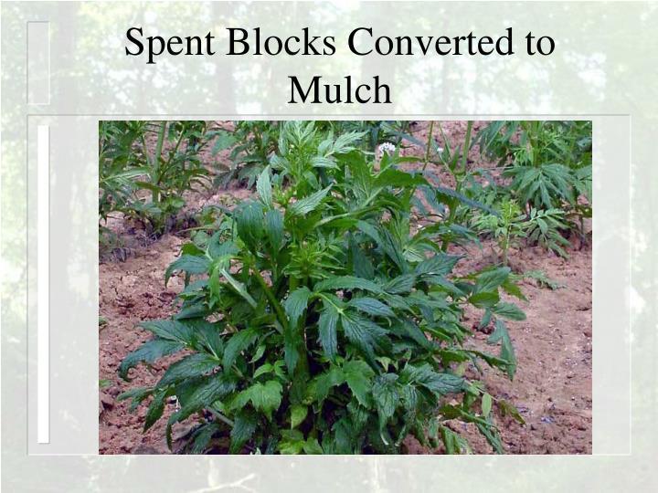 Spent Blocks Converted to Mulch