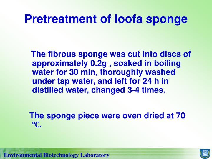 Pretreatment of loofa sponge