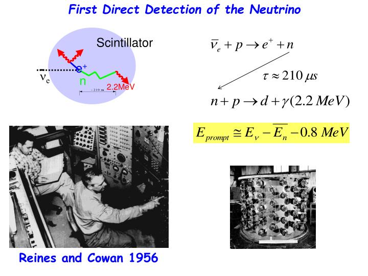 First Direct Detection of the Neutrino