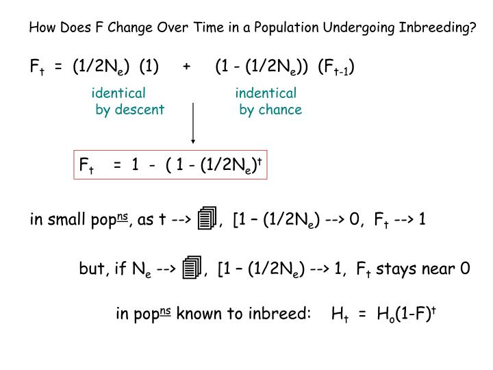 How Does F Change Over Time in a Population Undergoing Inbreeding?