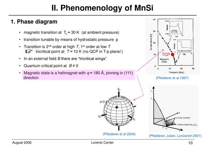 II. Phenomenology of MnSi