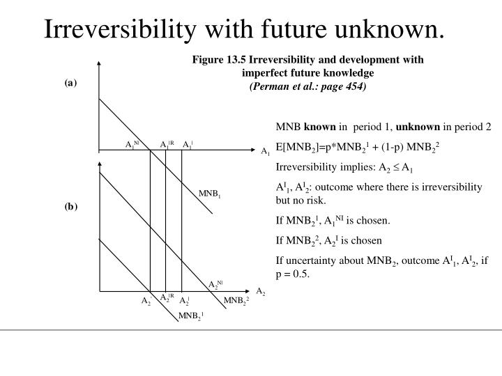 Irreversibility with future unknown.