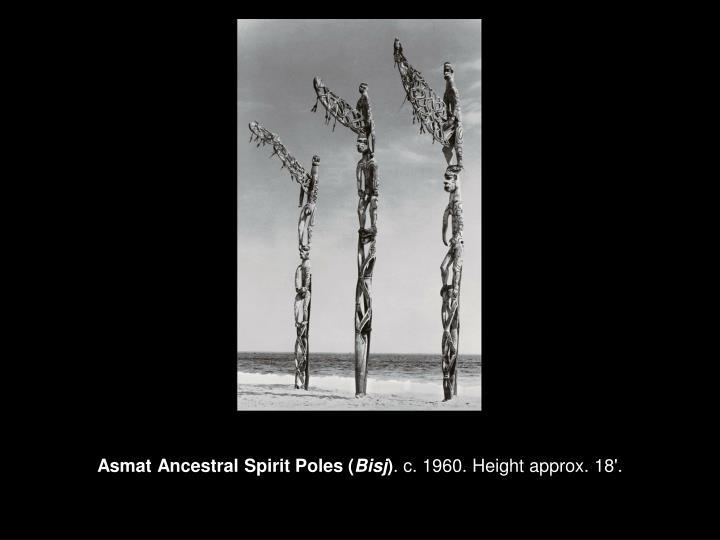 Asmat Ancestral Spirit Poles (
