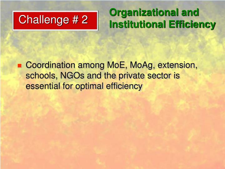 Organizational and Institutional Efficiency