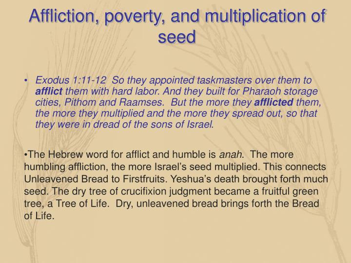 Affliction, poverty, and multiplication of seed