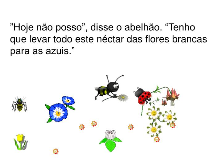 """""""Hoje não posso"""", disse o abelhão. """"Tenho que levar todo este néctar das flores brancas para as azuis."""""""