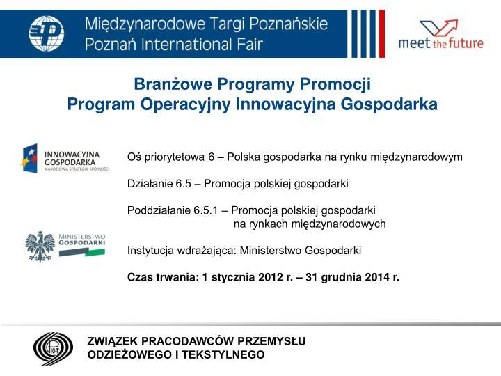 Branżowe Programy Promocji