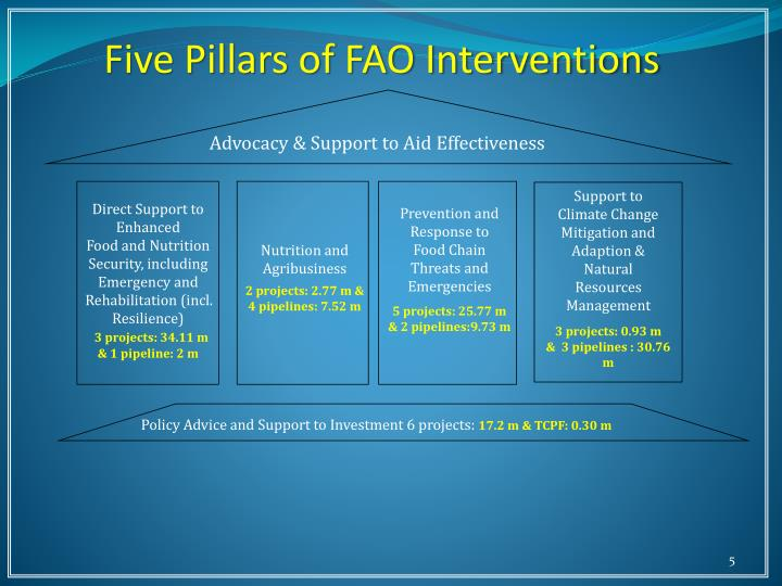 Five Pillars of FAO Interventions