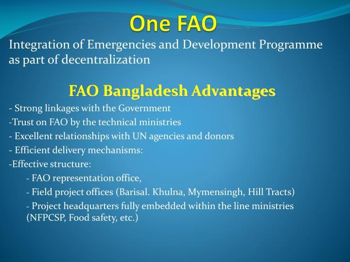 One FAO