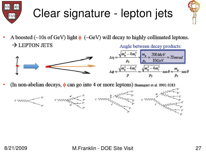 Clear signature - lepton jets