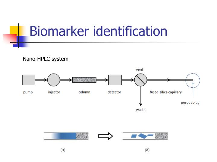 Biomarker identification