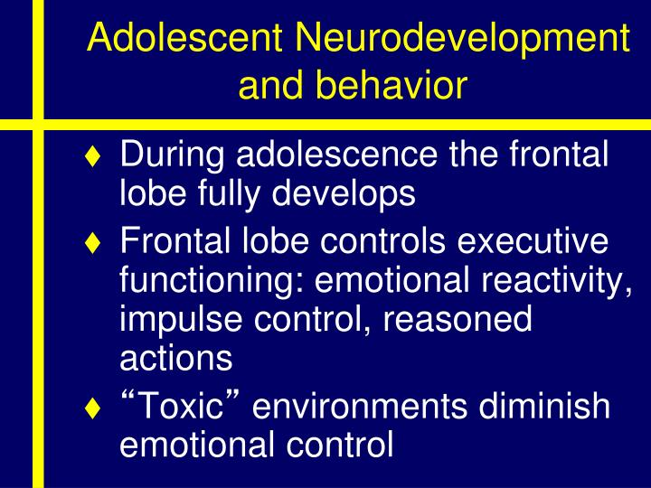 Adolescent Neurodevelopment