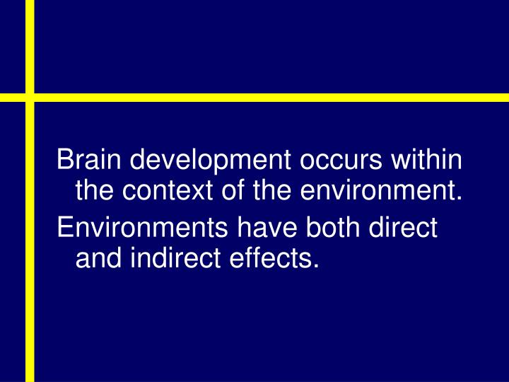 Brain development occurs within the context of the environment.