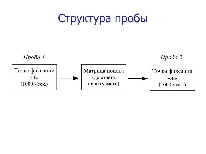 Структура пробы