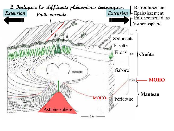 2. Indiquez les différents phénomènes tectoniques.