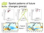 spatial patterns of future changes precip