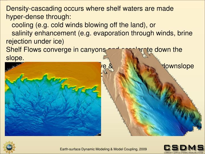 Density-cascading occurs where shelf waters are made hyper-dense through: