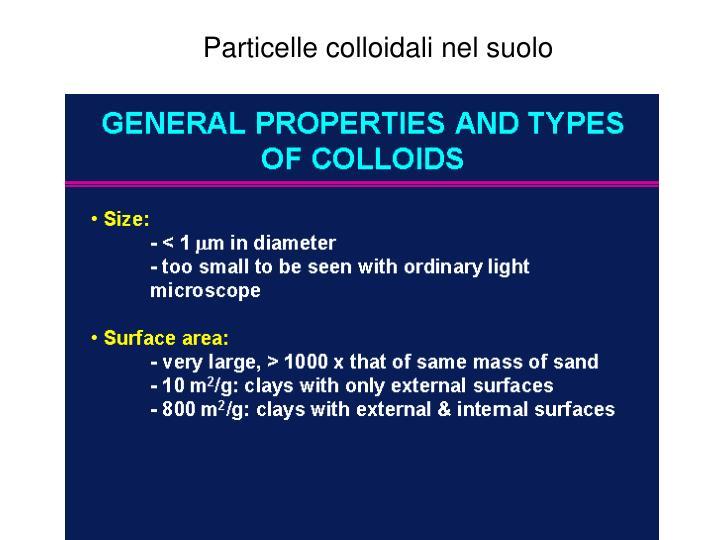 Particelle colloidali nel suolo