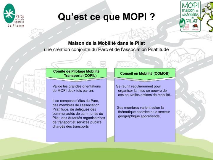 Comité de Pilotage Mobilité Transports (COPIL)