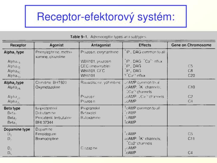 Receptor-efektorový systém:
