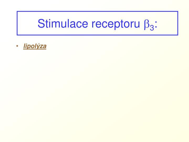 Stimulace receptoru