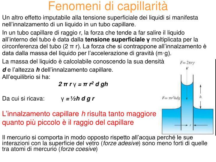 Fenomeni di capillarità