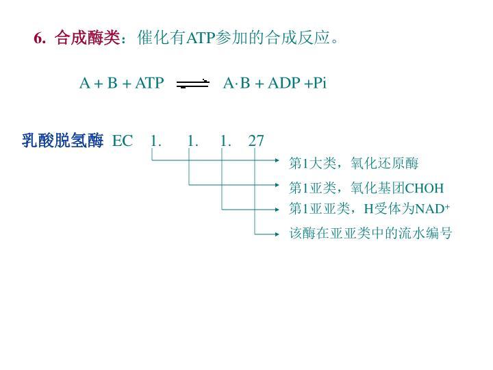 A + B + ATP
