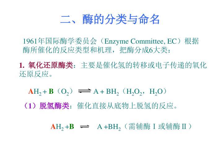 二、酶的分类与命名
