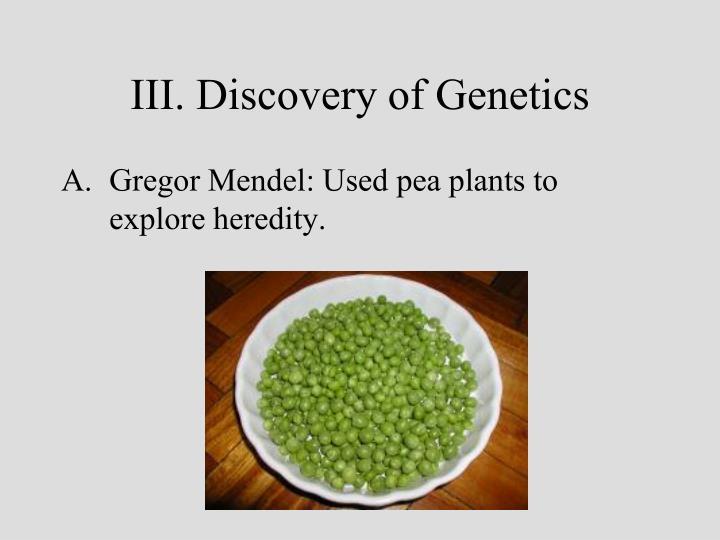 III. Discovery of Genetics