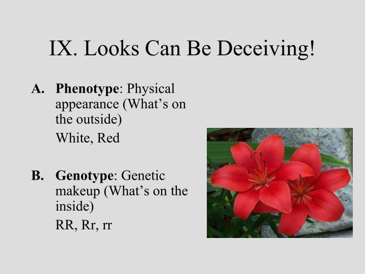 IX. Looks Can Be Deceiving!