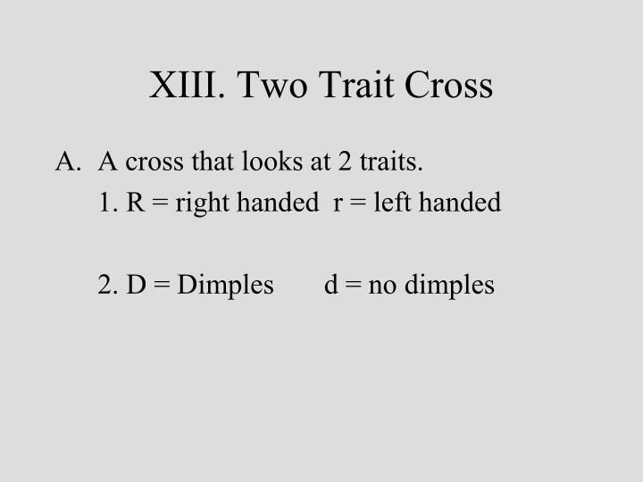 XIII. Two Trait Cross