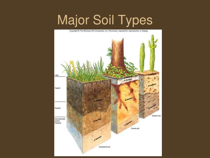 Major Soil Types