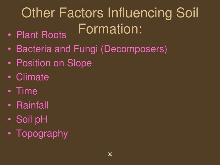 Other Factors Influencing Soil Formation: