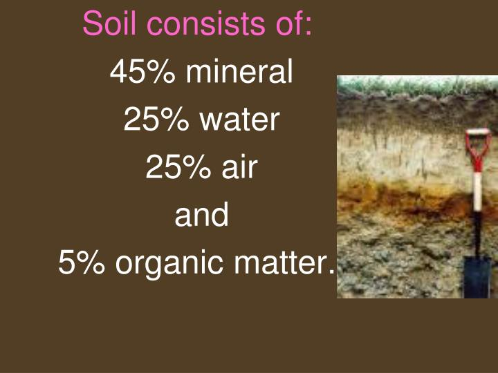 Soil consists of: