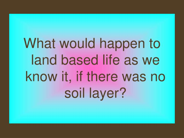 What would happen to land based life as we know it, if there was no soil layer?