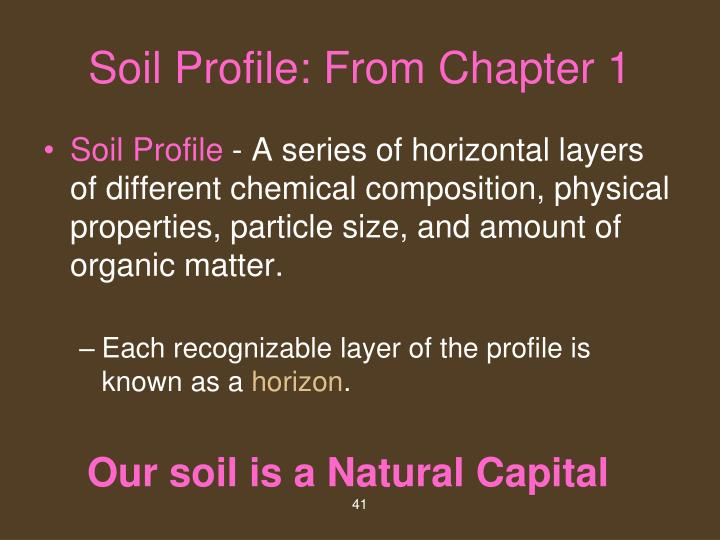 Soil Profile: From Chapter 1