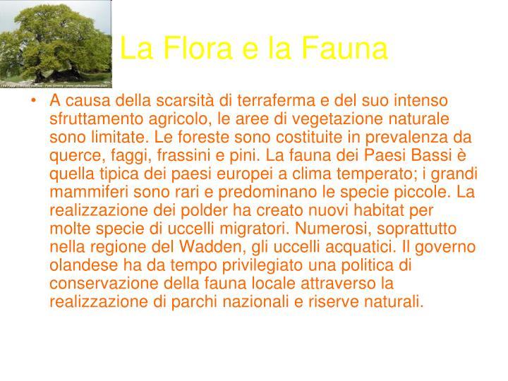 La Flora e la Fauna