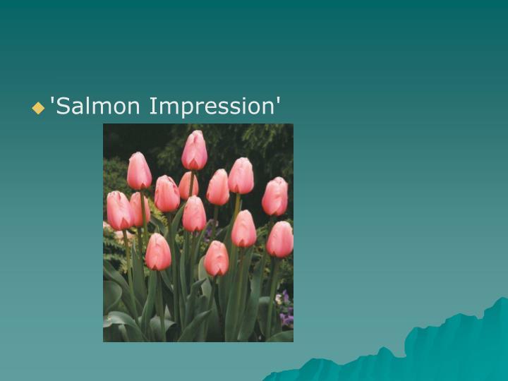 'Salmon Impression'