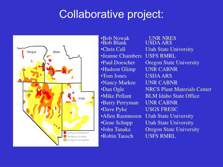 Collaborative project: