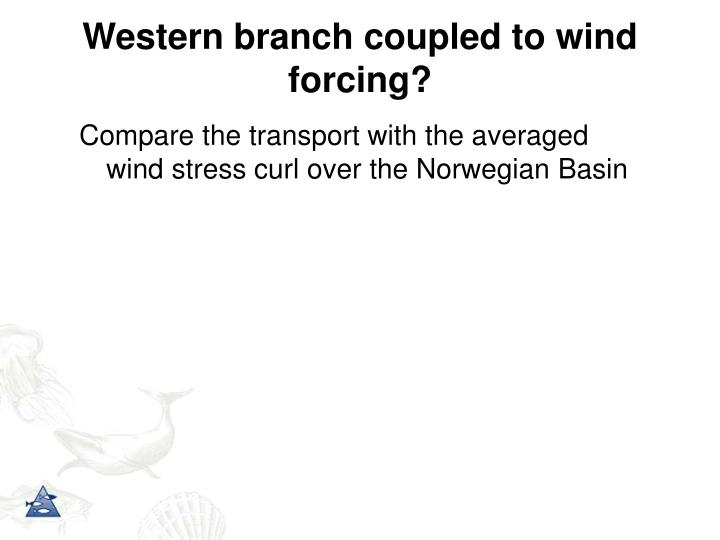 Western branch coupled to wind forcing?