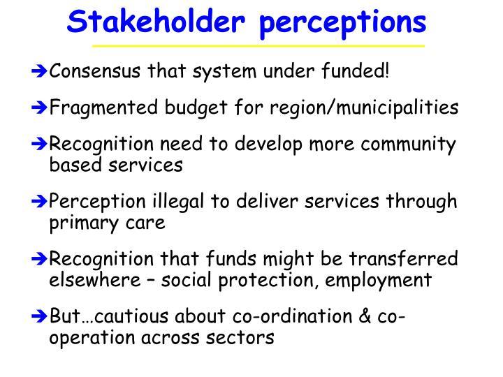 Stakeholder perceptions