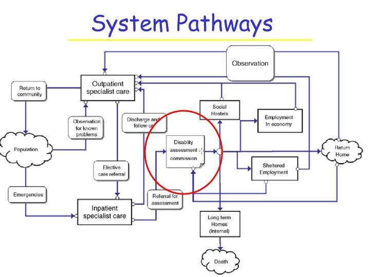 System Pathways